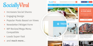 SociallyViral-Wordpress-Theme-Review